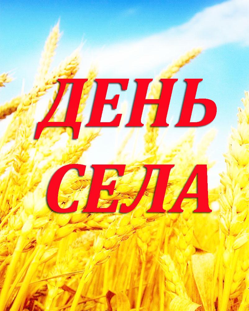 Родному краю, милой сердцу земле, селу нашему – посвящается!