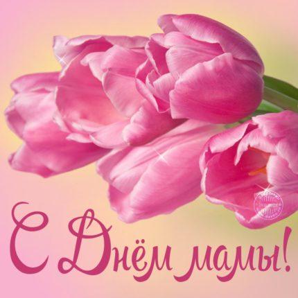 В День матери мы славим наших мам!
